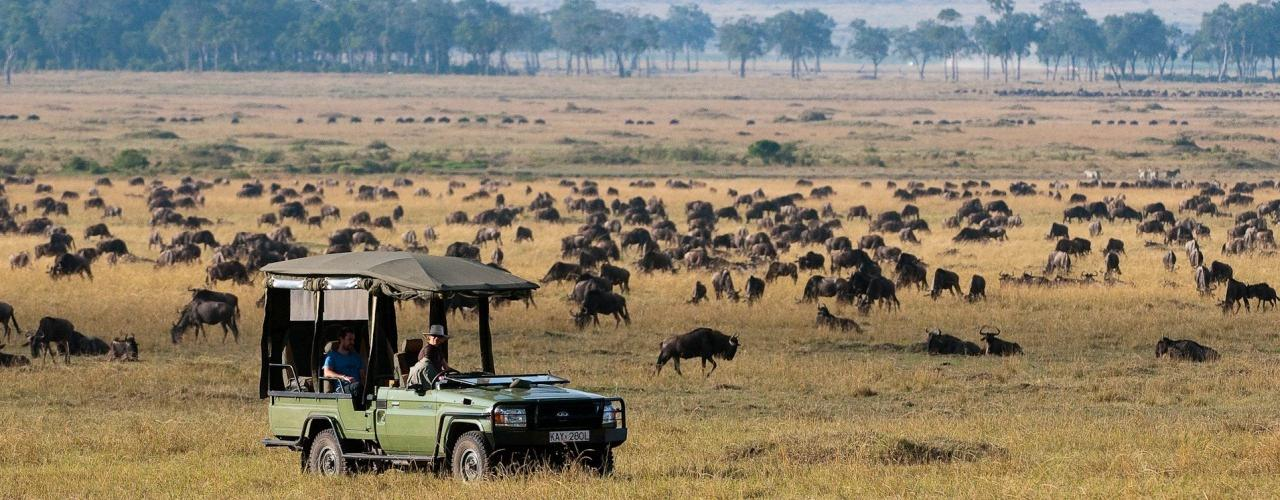 Safari Headwear South Africa